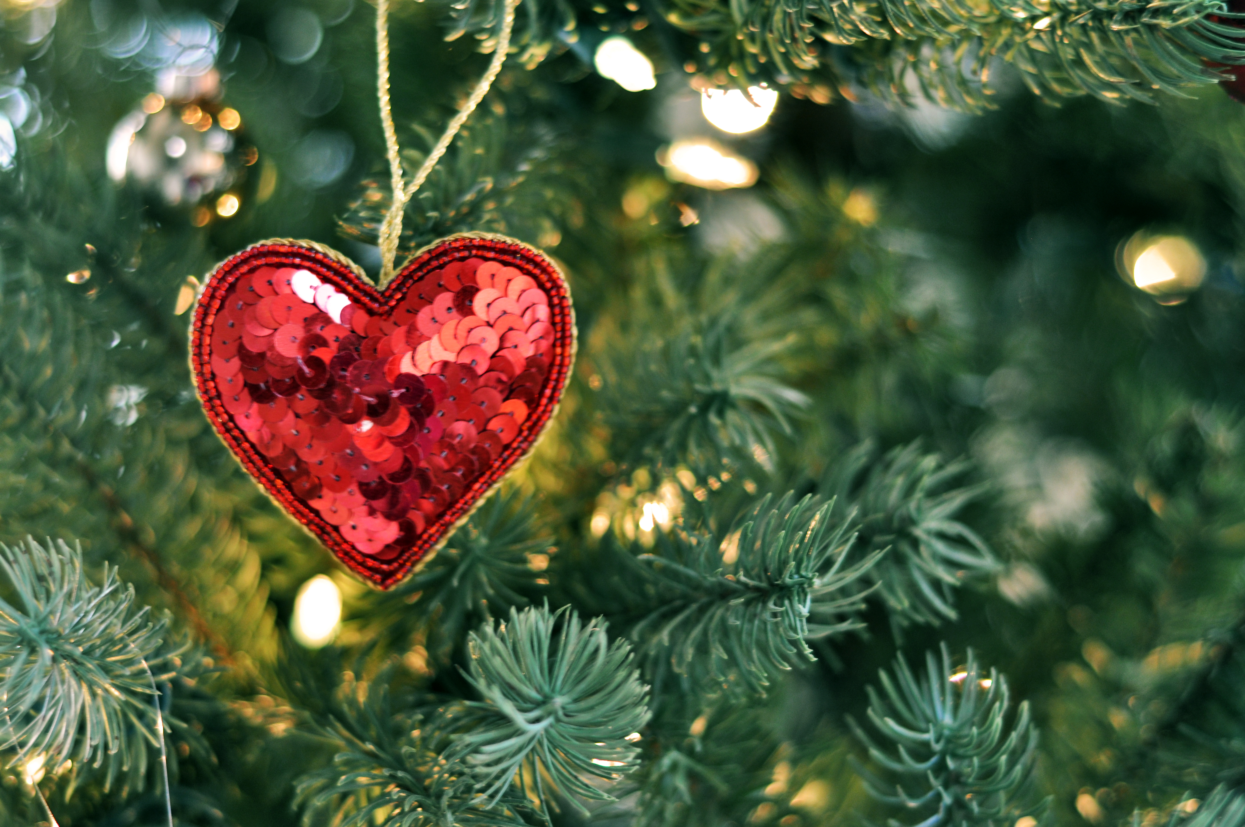 Pic(s) Of The Week: Xmas Marks The Heart Spot